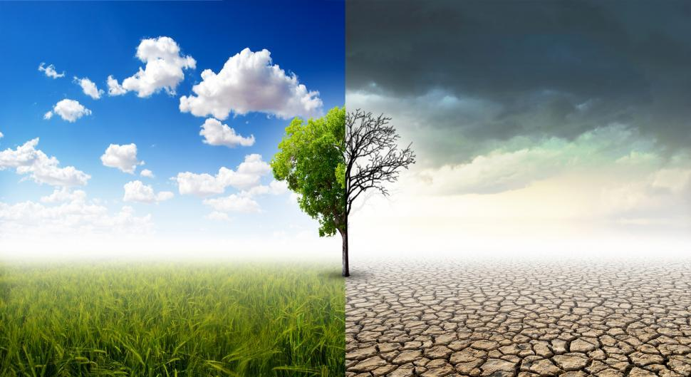 Download Free Stock Photo of Climate Change Concept - Healthy vs Damaged Landscape