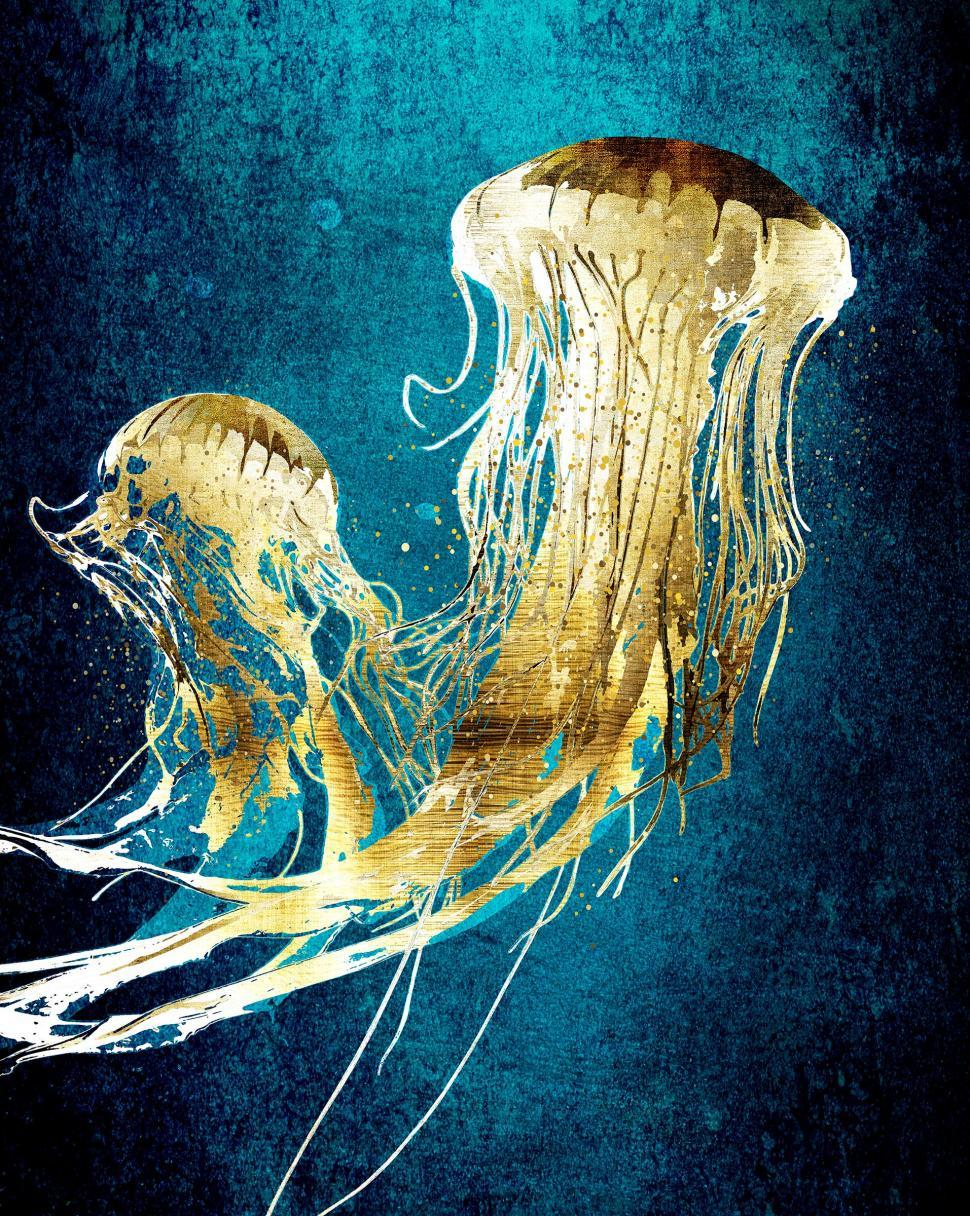 Download Free Stock Photo of Metallic Jellyfish Drifting in the Current