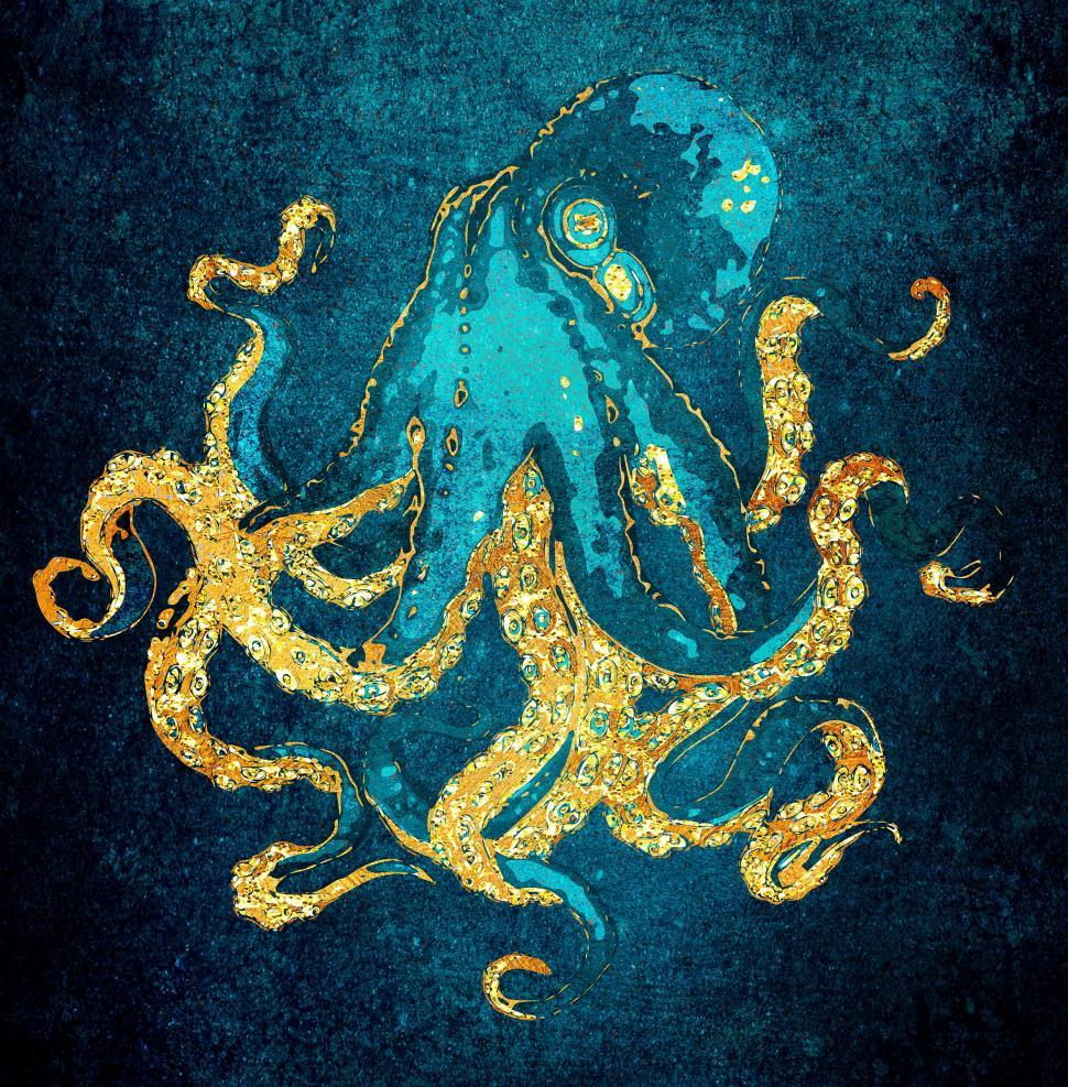 Download Free Stock Photo of Golden and Turquoise Octopus