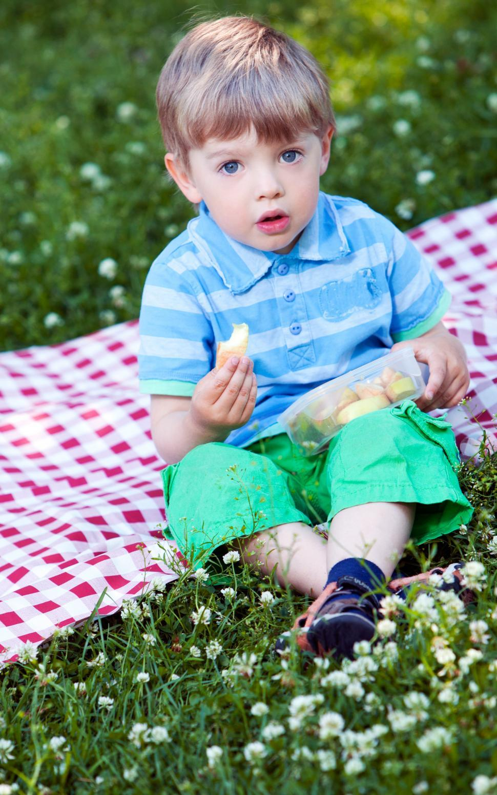 Download Free Stock Photo of Cute little boy at picnic in the park