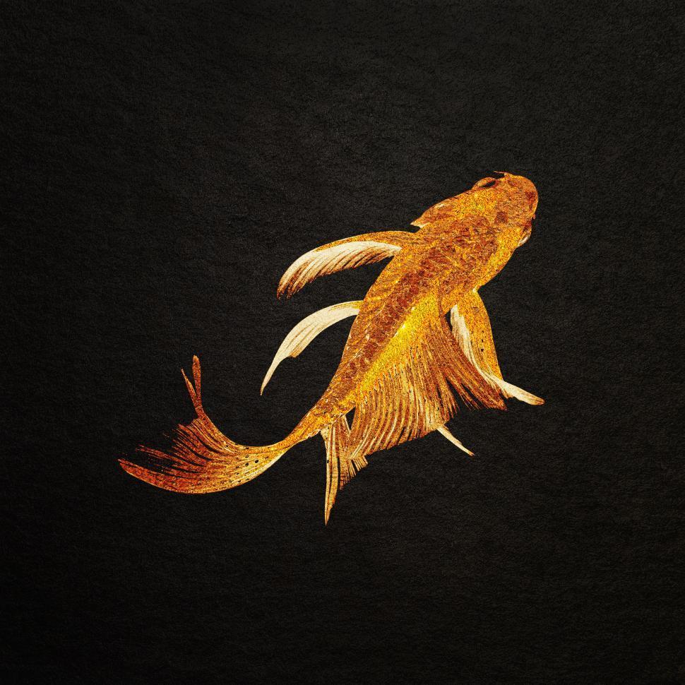 Download Free Stock Photo of Koi Carp - Golden Texturized Koi Carp