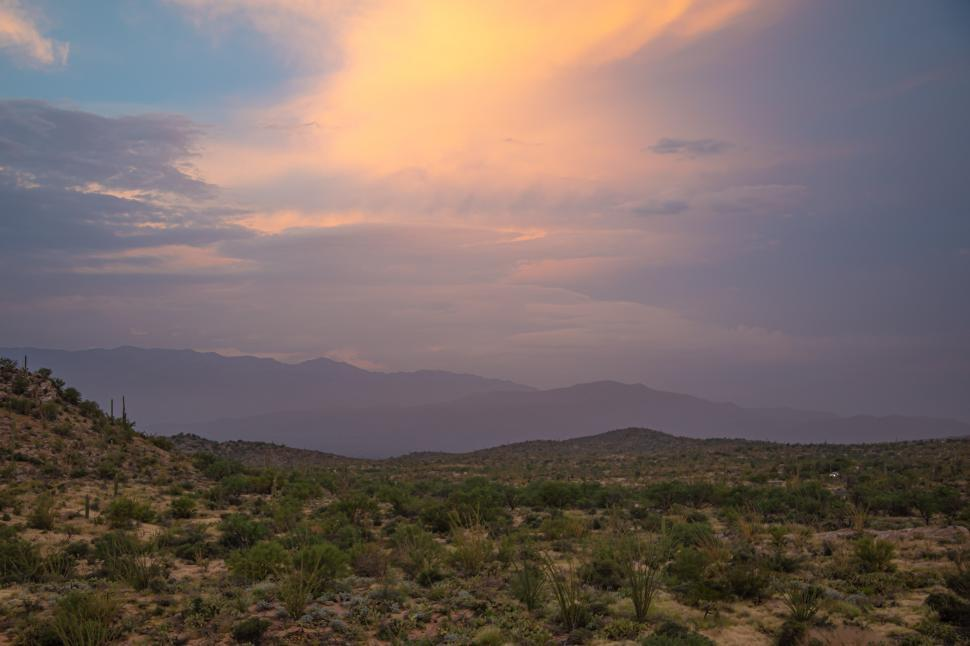 Download Free Stock Photo of Evening Sky over Sonoran Desert