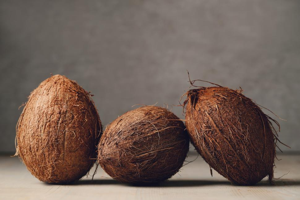 Download Free Stock Photo of Whole coconuts