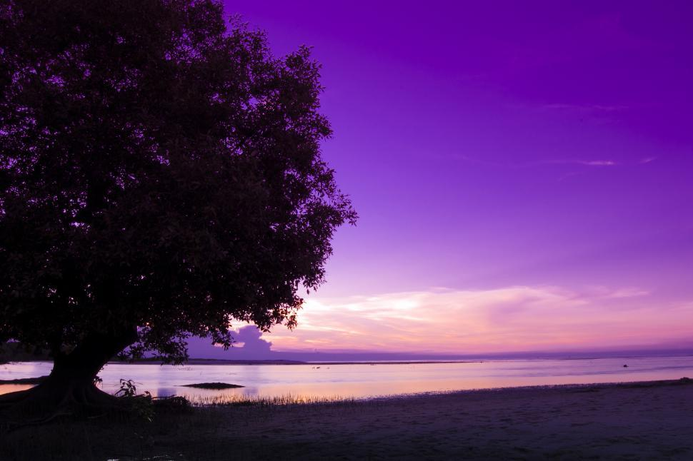 Download Free Stock HD Photo of Serene Online