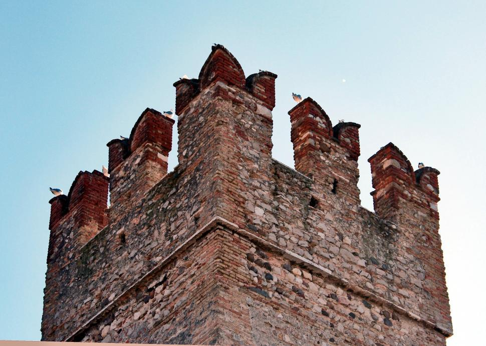 Download Free Stock Photo of Old castle detail, with gulls