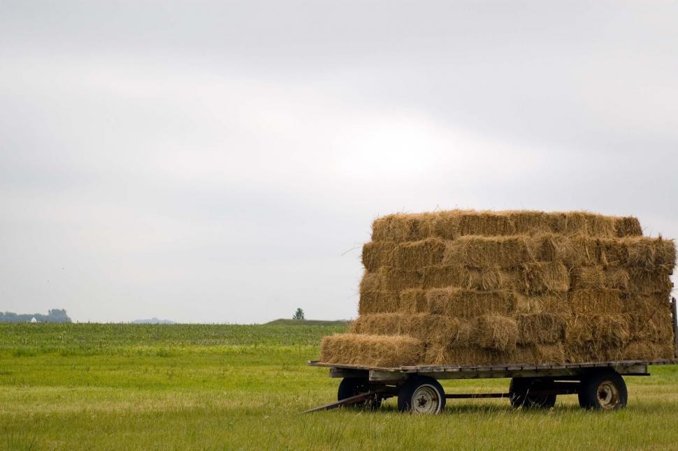 Download Free Stock HD Photo of Hay Rack Online