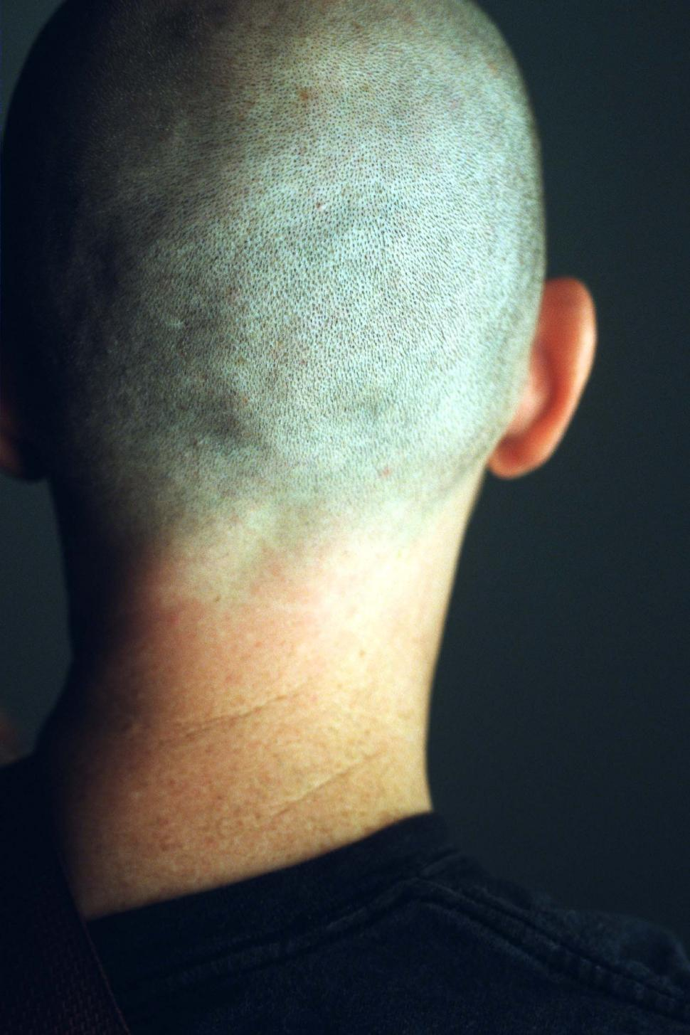 Download Free Stock HD Photo of Back of a man's head - nearly shaved head Online
