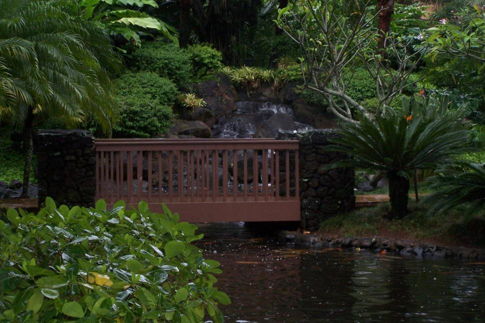 Download Free Stock Photo of Garden Bridge in Hawaii