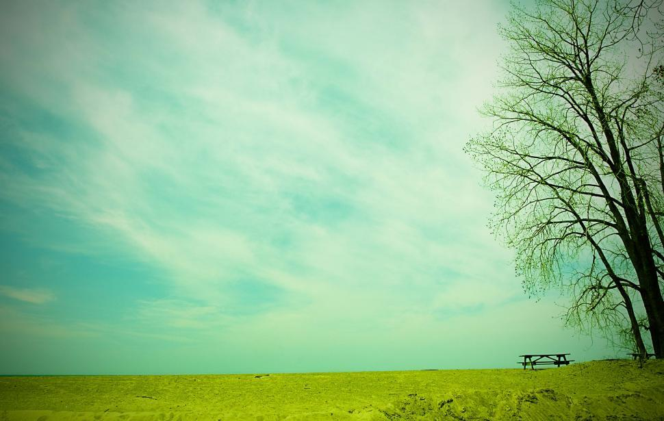 Download Free Stock Photo of Lonely bench