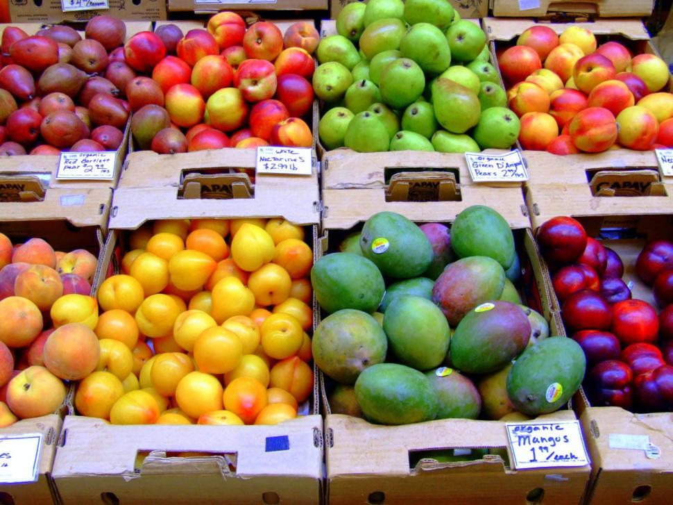 Download Free Stock Photo of Apples Bulk Fresh Fruit