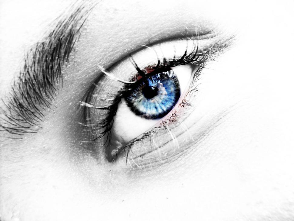 Download Free Stock Photo of Eye
