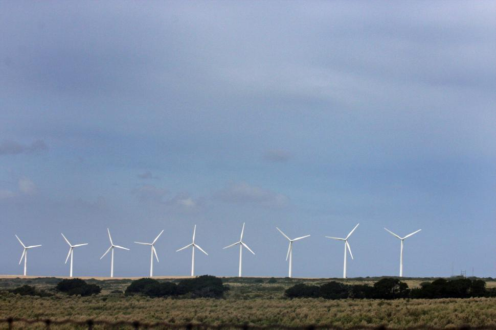 Download Free Stock Photo of Windmills