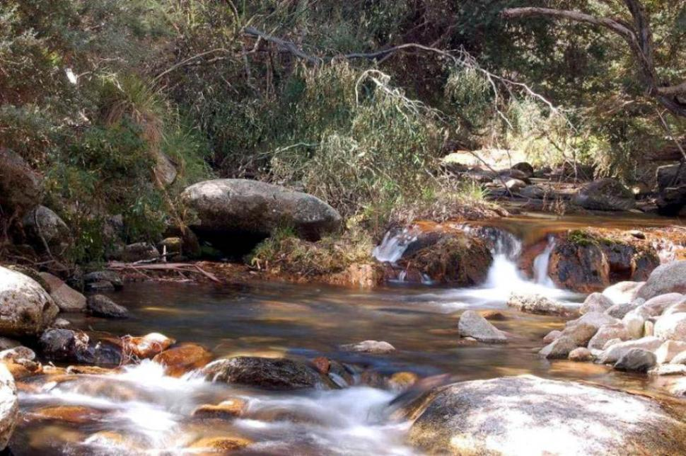 Download Free Stock HD Photo of Leather Barrel Creek Online