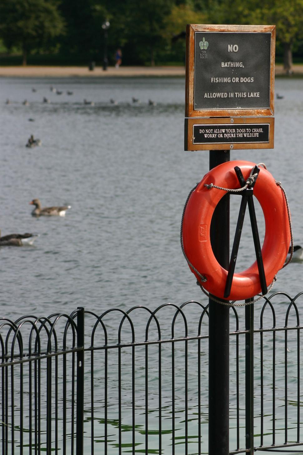 Download Free Stock HD Photo of Lake Warning Sign Online