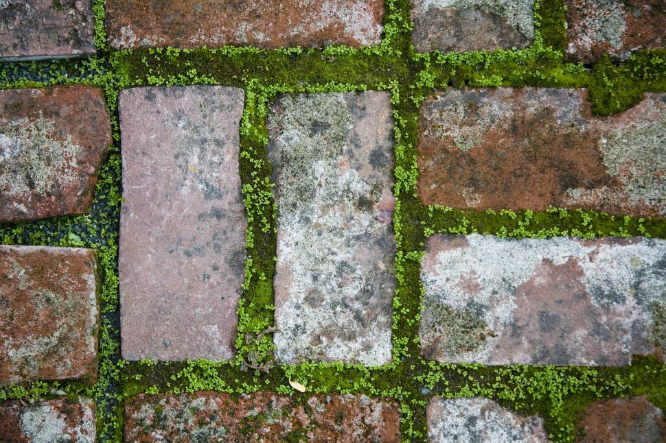 Download Free Stock HD Photo of Mossed Brick Online