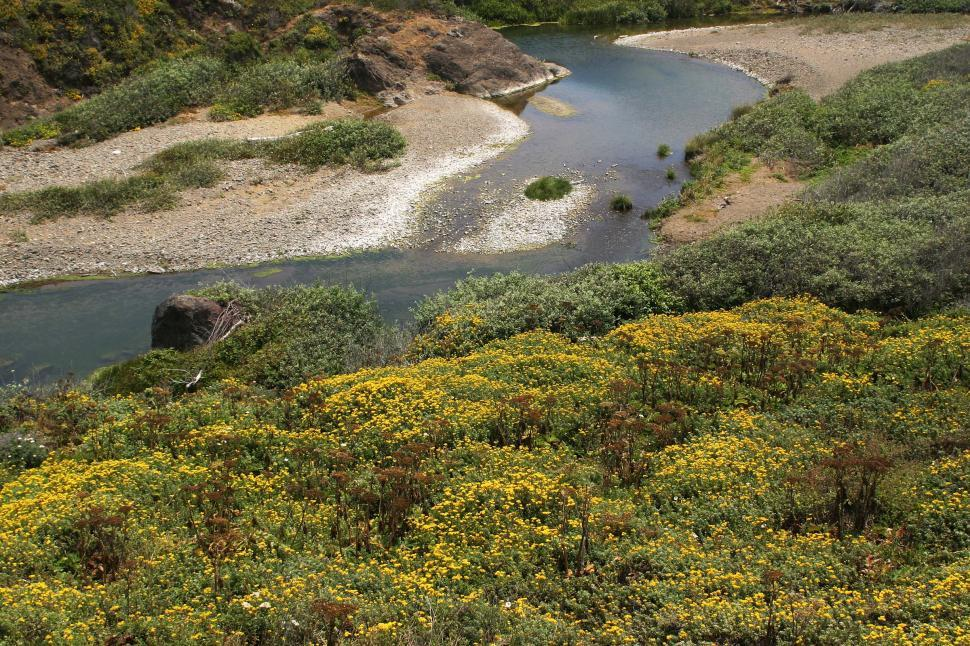 Download Free Stock Photo of Northern California river