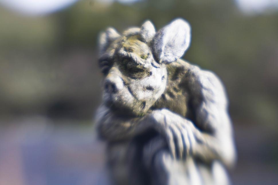 Download Free Stock HD Photo of Gargoyle Online