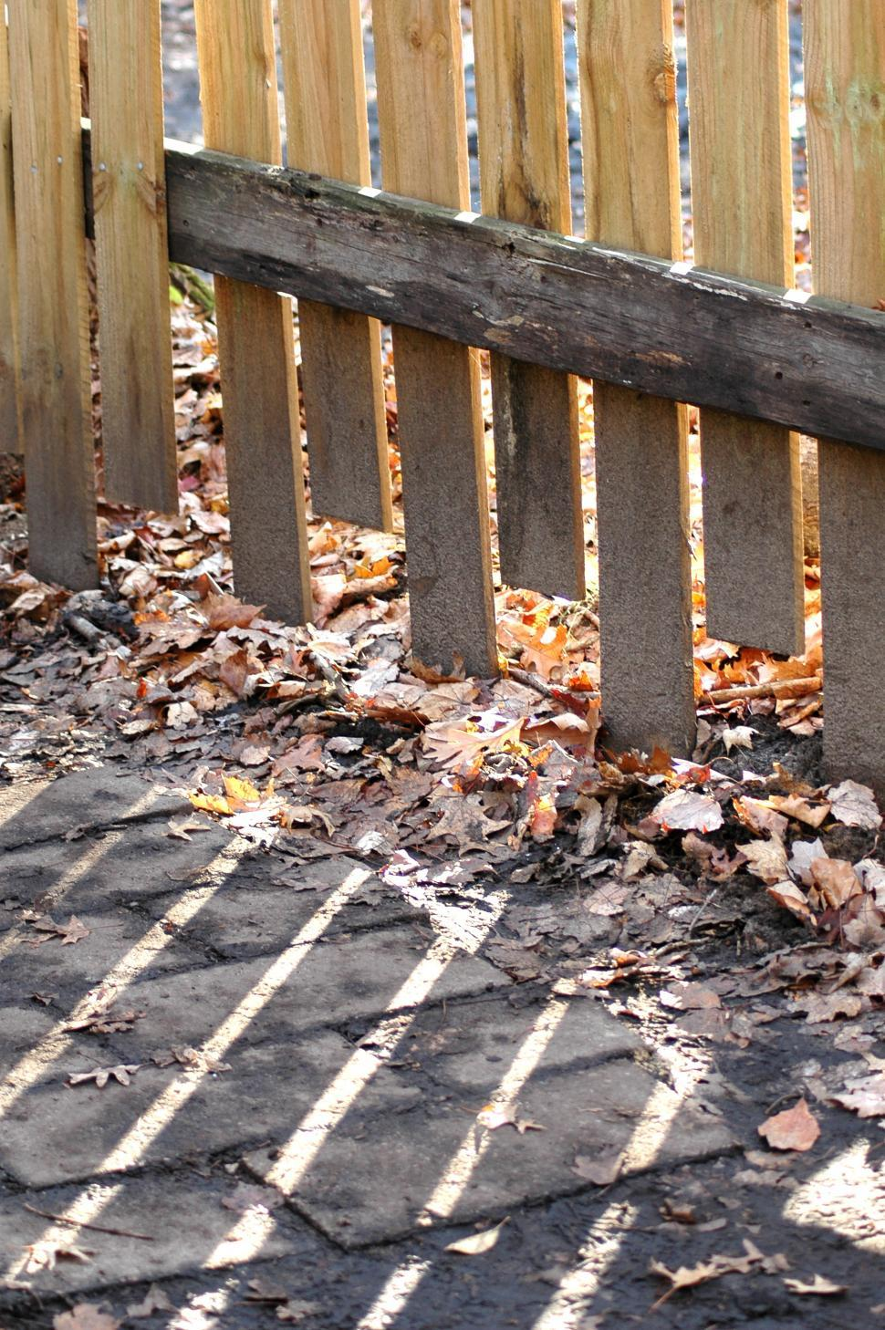 Download Free Stock HD Photo of Fence and Leaves Online