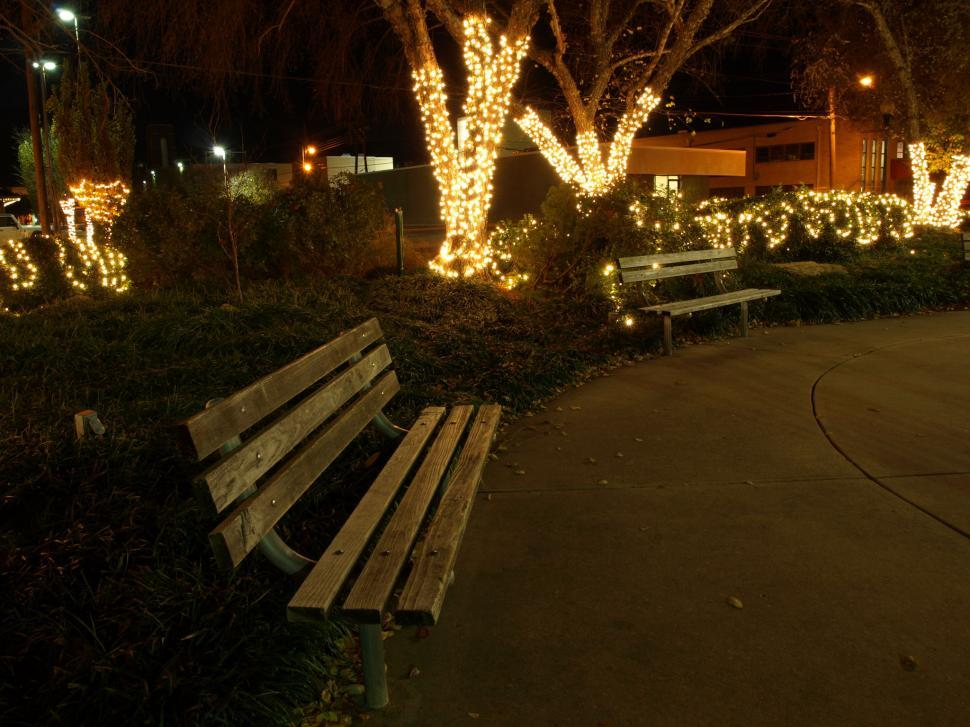 Download Free Stock Photo of Park at Night