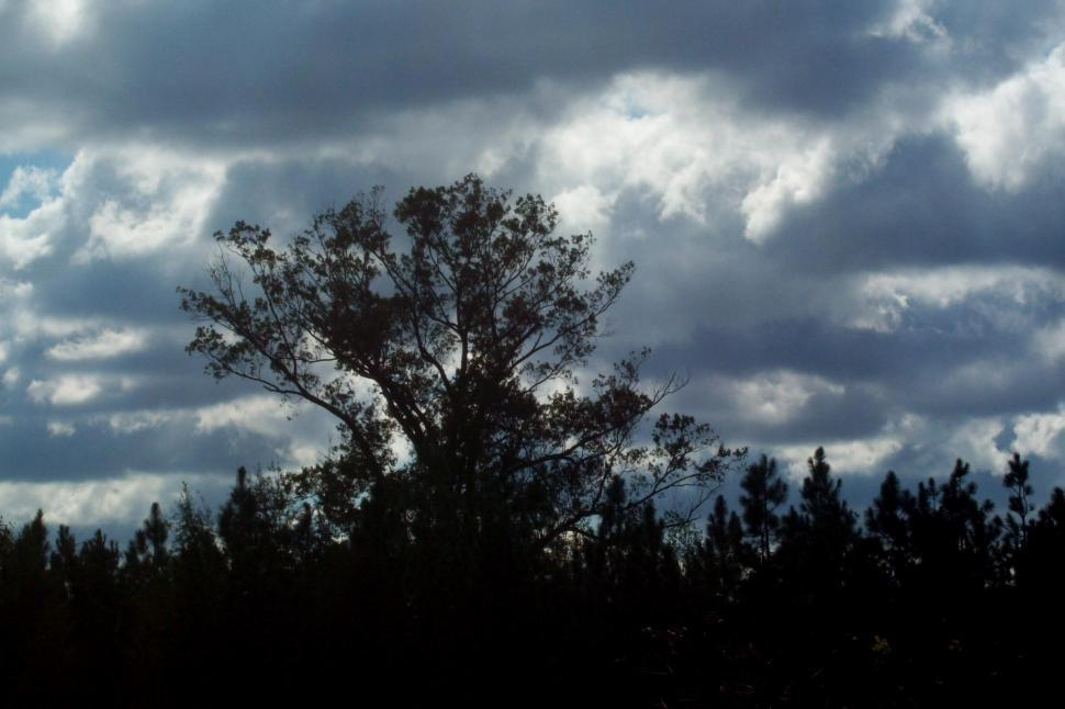 Download Free Stock Photo of Dark Clouds on the Horizon