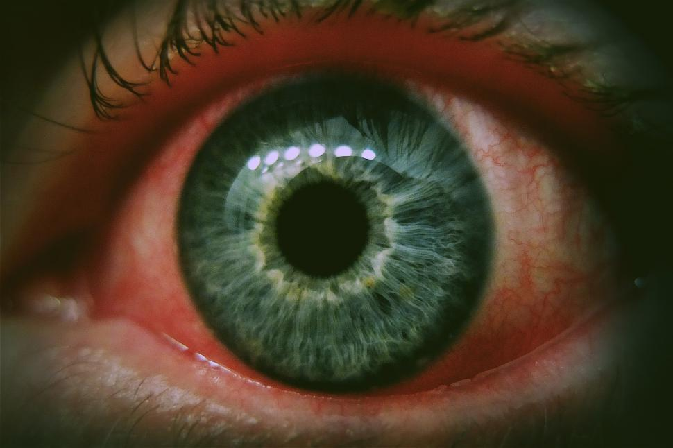 Download Free Stock HD Photo of Red Eye Online