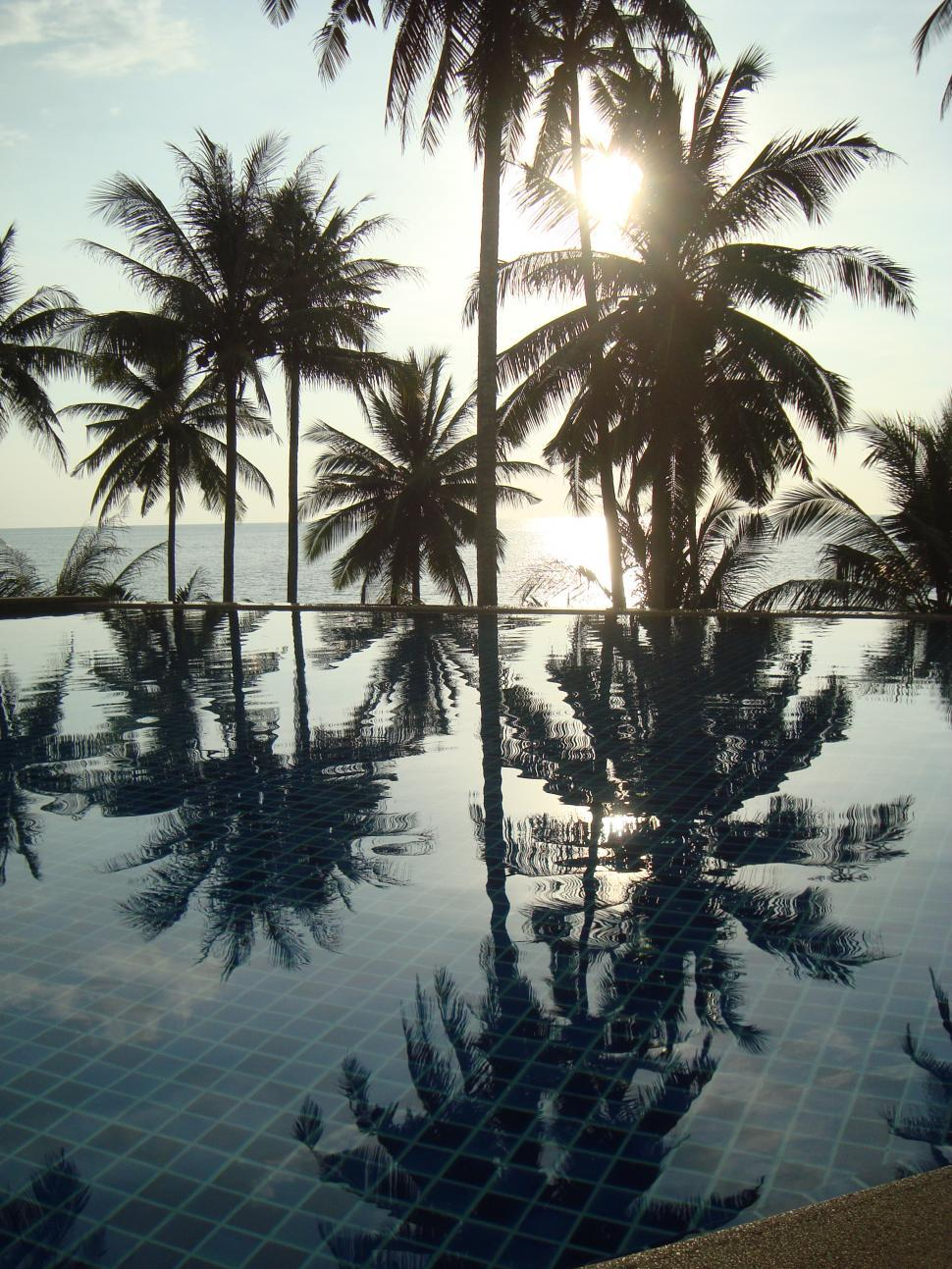 Download Free Stock Photo of Tropical Ocean View Swimming Pool
