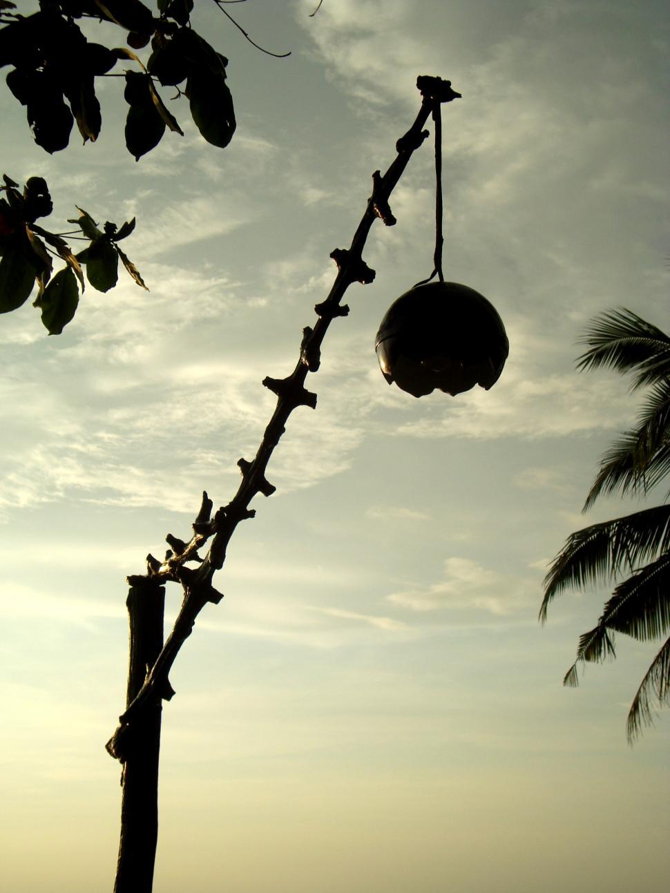 Download Free Stock Photo of Coconut Shell Lamp