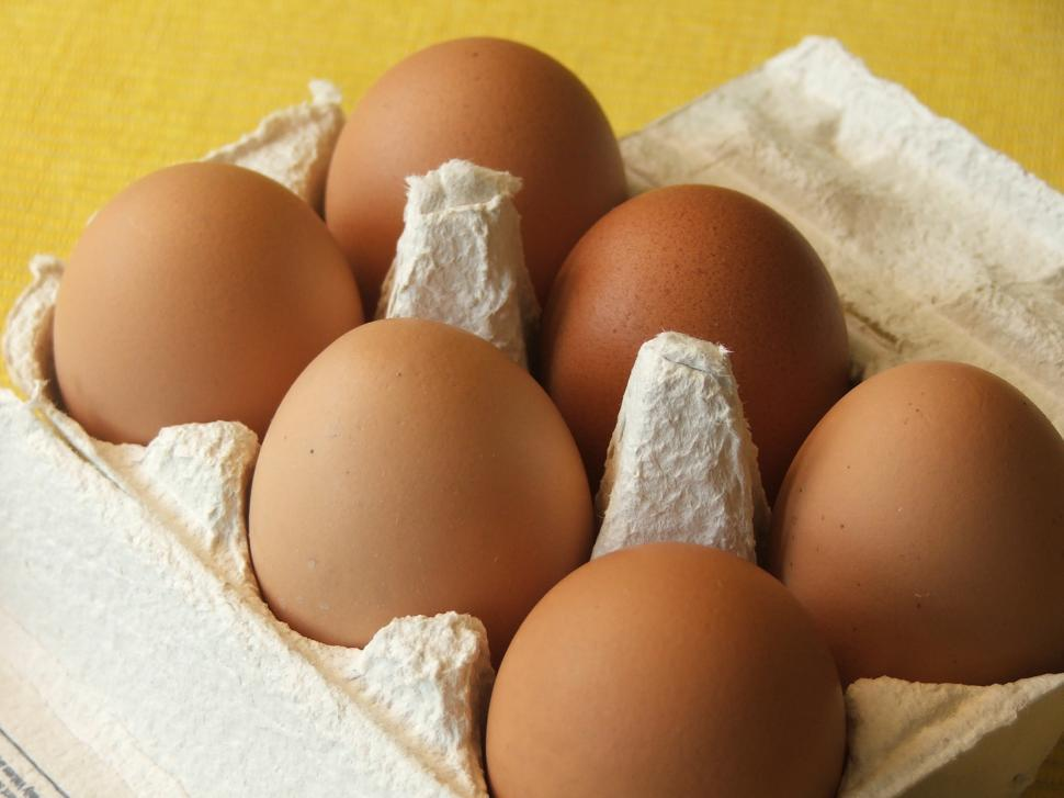 Download Free Stock Photo of fresh brown eggs in carton
