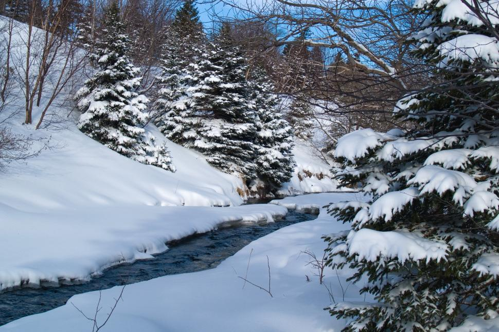 Download Free Stock HD Photo of Winter Online