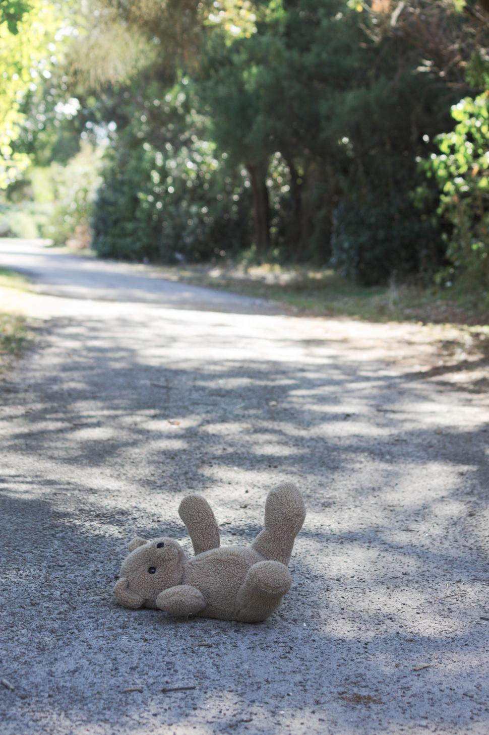 Download Free Stock Photo of Teddy bear on the ground