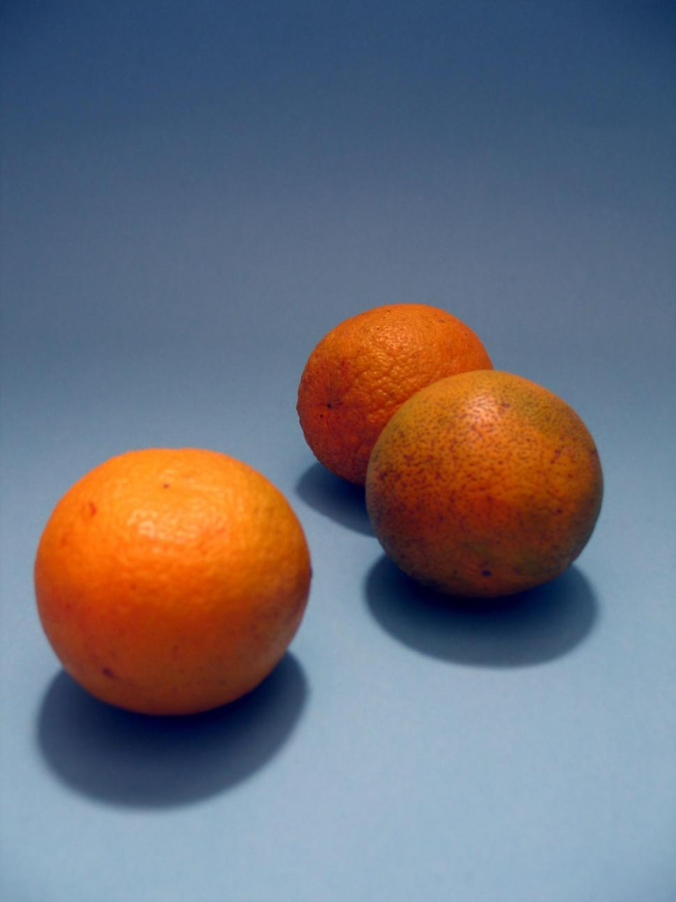 Download Free Stock Photo of Three Oranges