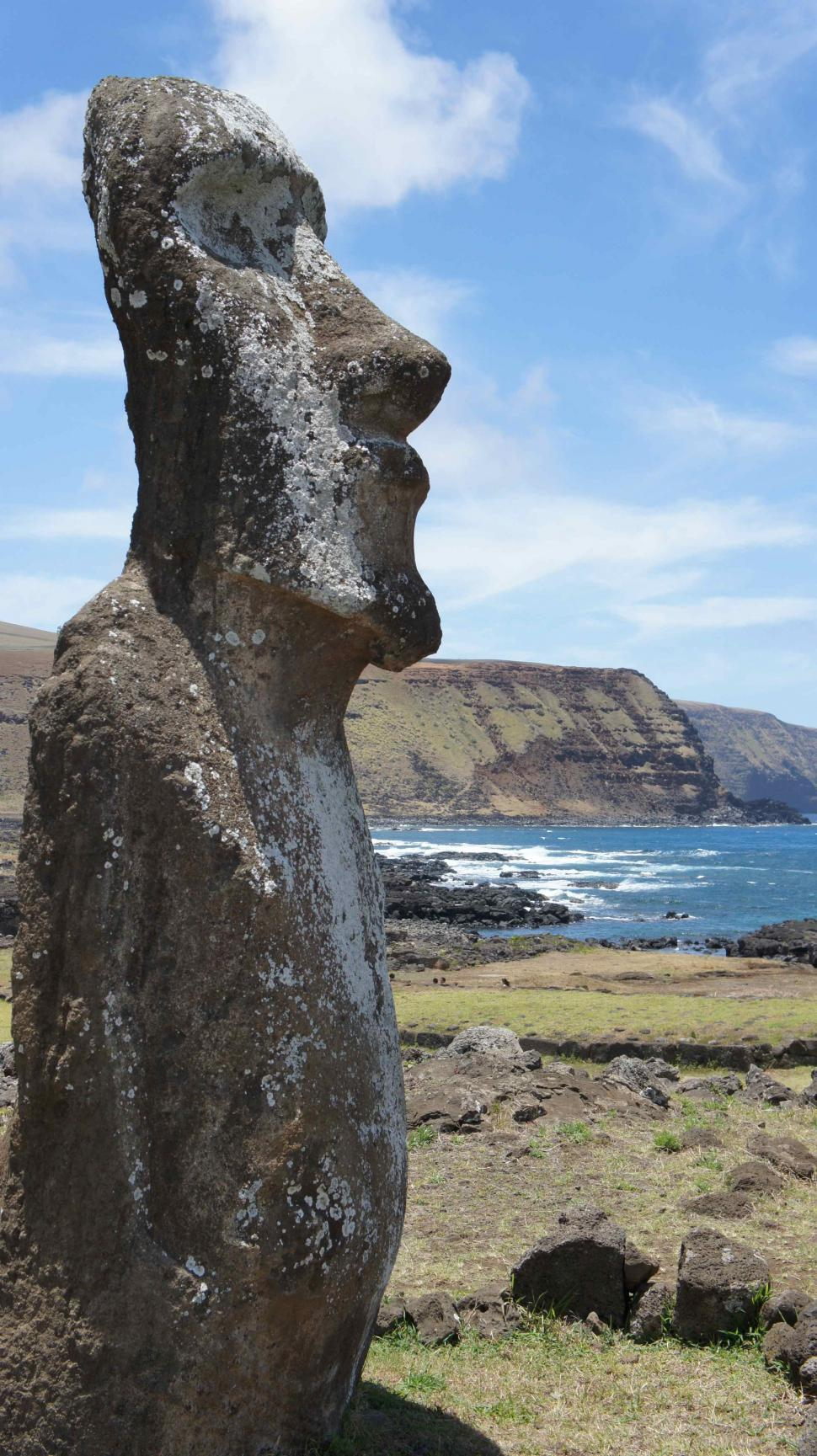 Download Free Stock HD Photo of Horses By Statues on Easter Island Online