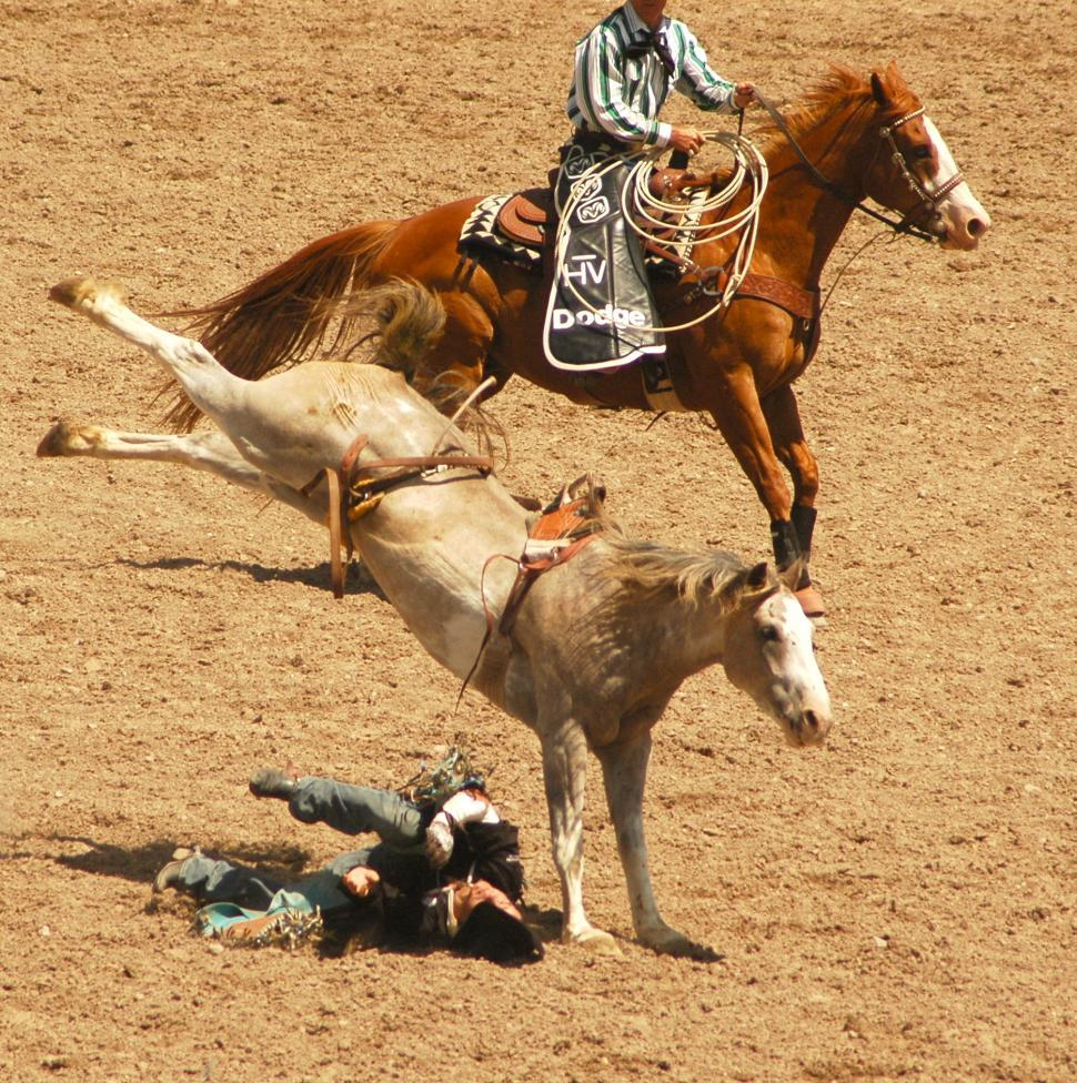 Download Free Stock Photo of Rodeo Crash