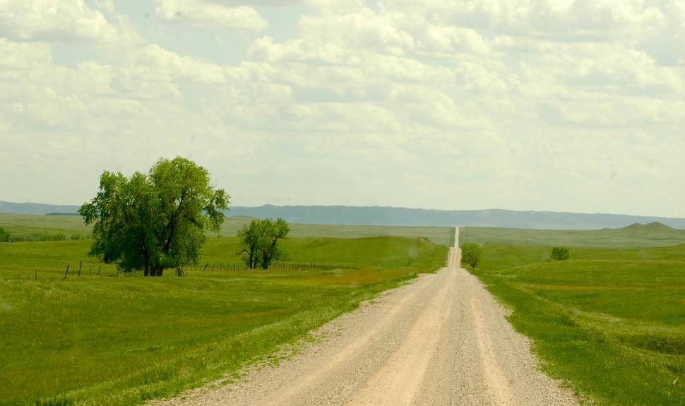 Download Free Stock HD Photo of Country Dirt Road with Lone Trees Online