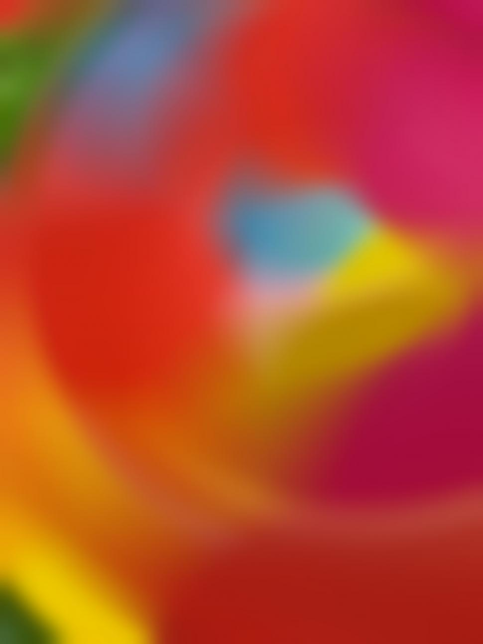 Download Free Stock Photo of Colorful Blurry Abstract Background