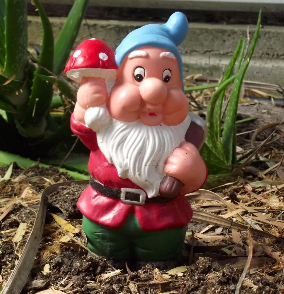 Download Free Stock Photo of Garden gnome