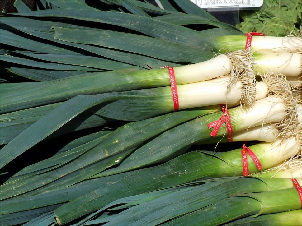Download Free Stock HD Photo of Leeks Online