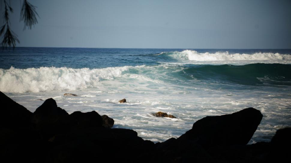 Download Free Stock Photo of Hawaii Beach and Surf