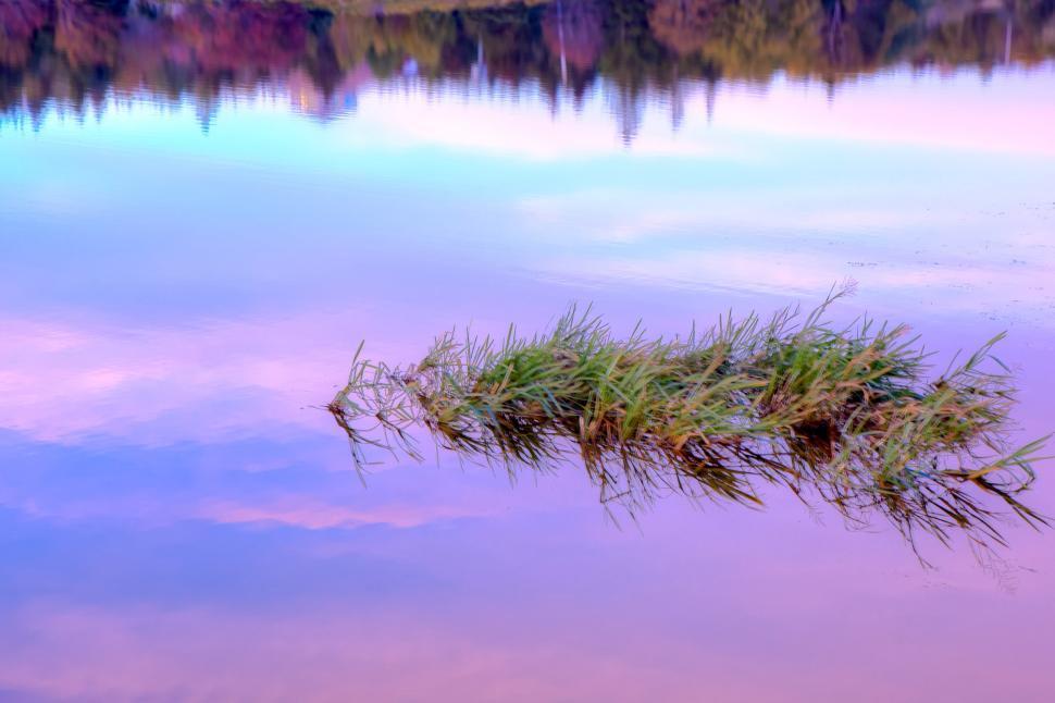 Download Free Stock Photo of Autumn Lake