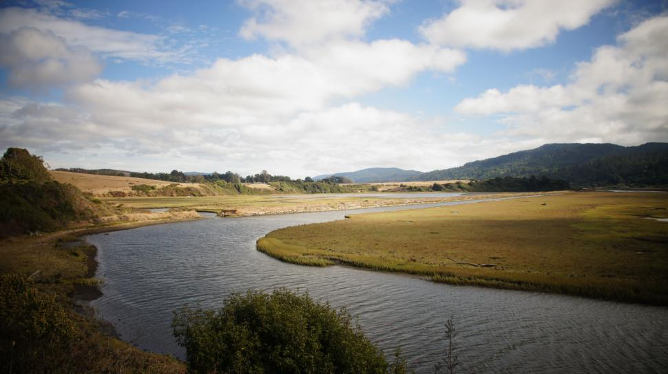 Download Free Stock Photo of River Along the Coast