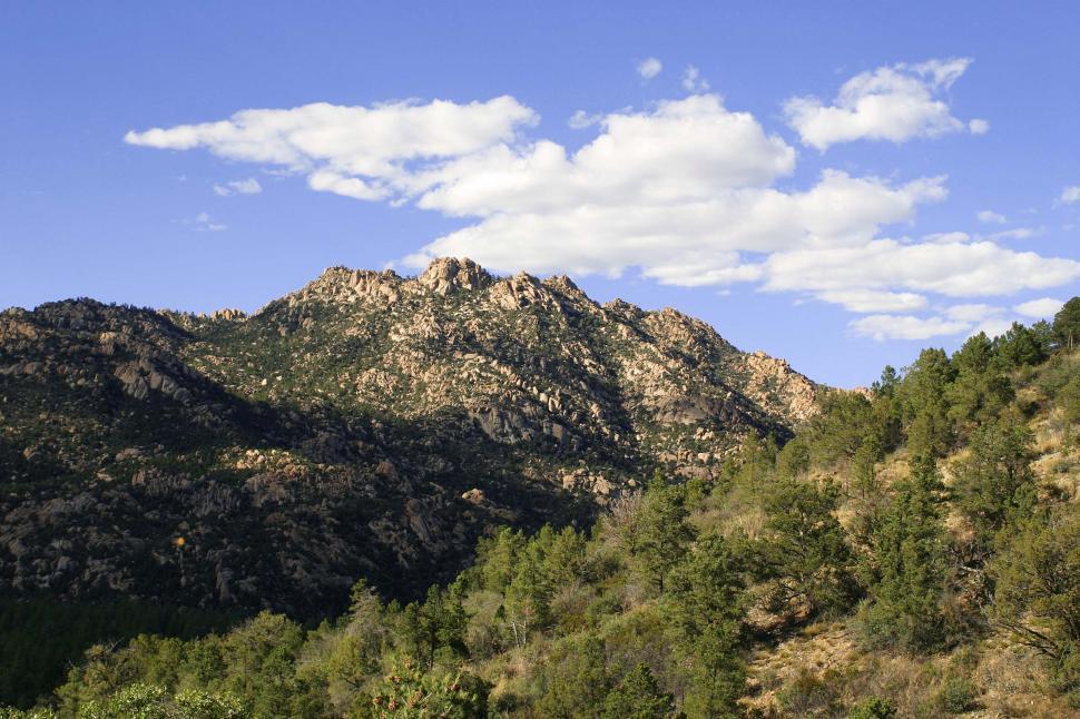 Download Free Stock HD Photo of Northern Arizona wilderness Online