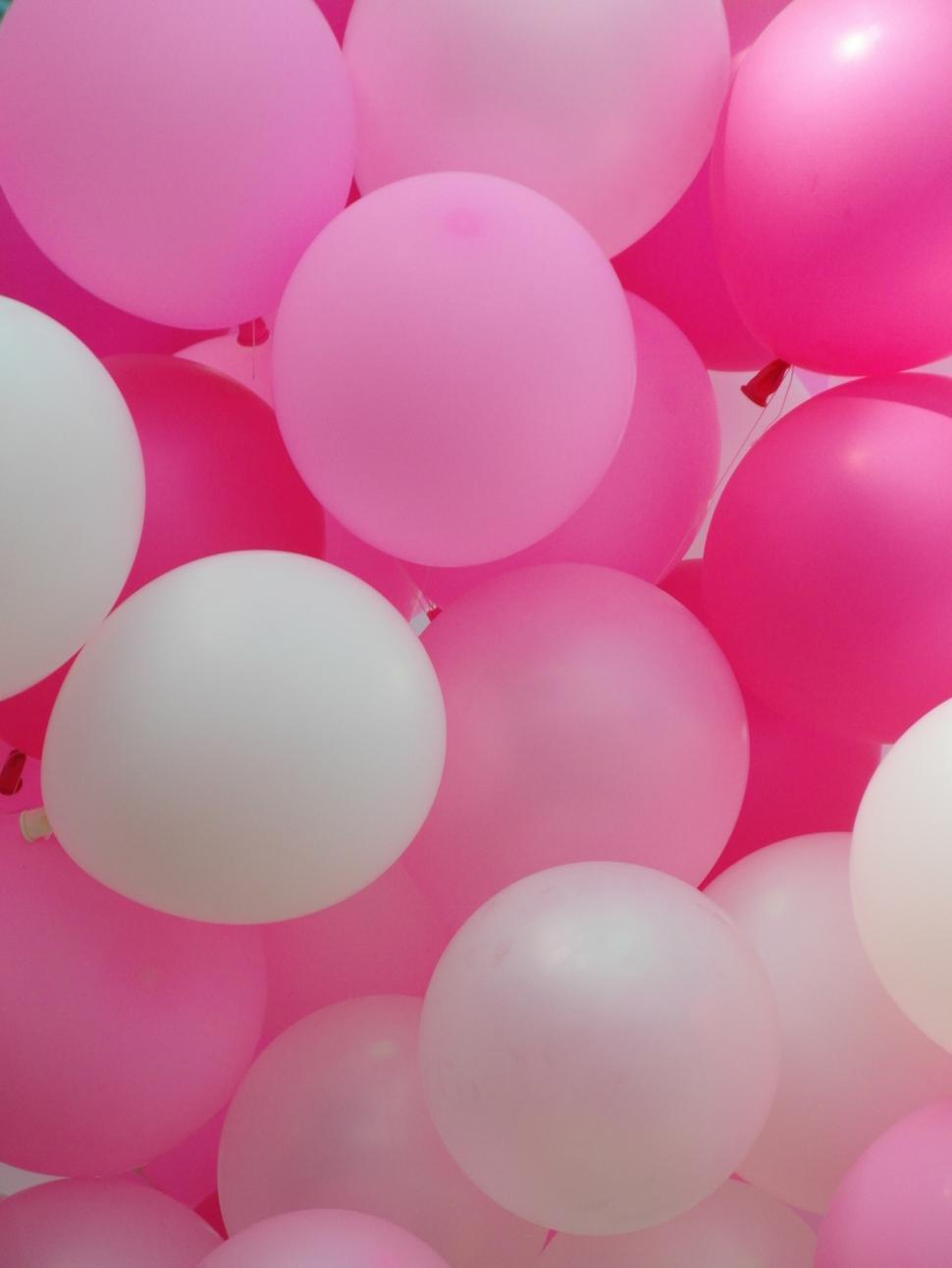 Download Free Stock Photo of Pink Balloons