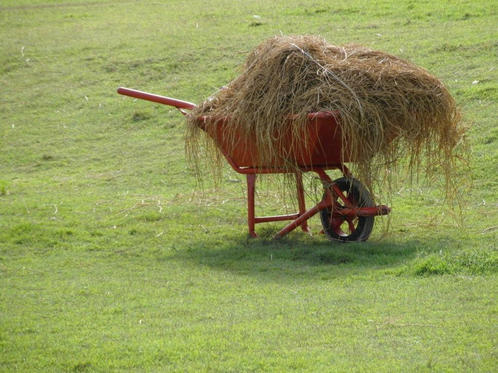 Download Free Stock HD Photo of Wheelbarrow Full of Hay Online