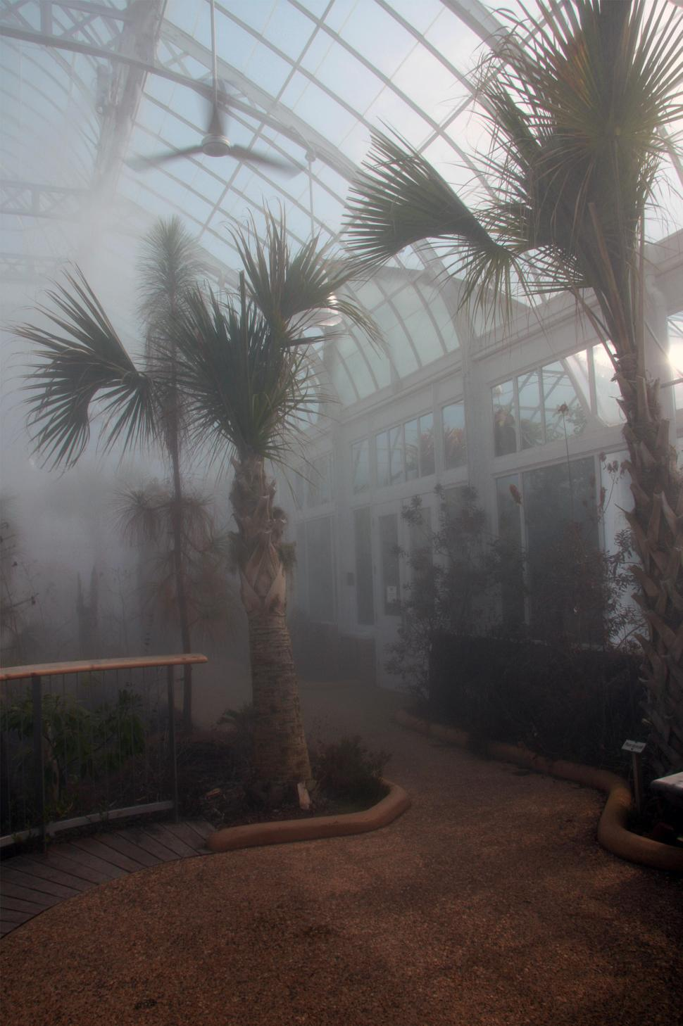 Download Free Stock Photo of Greenhouse Misting