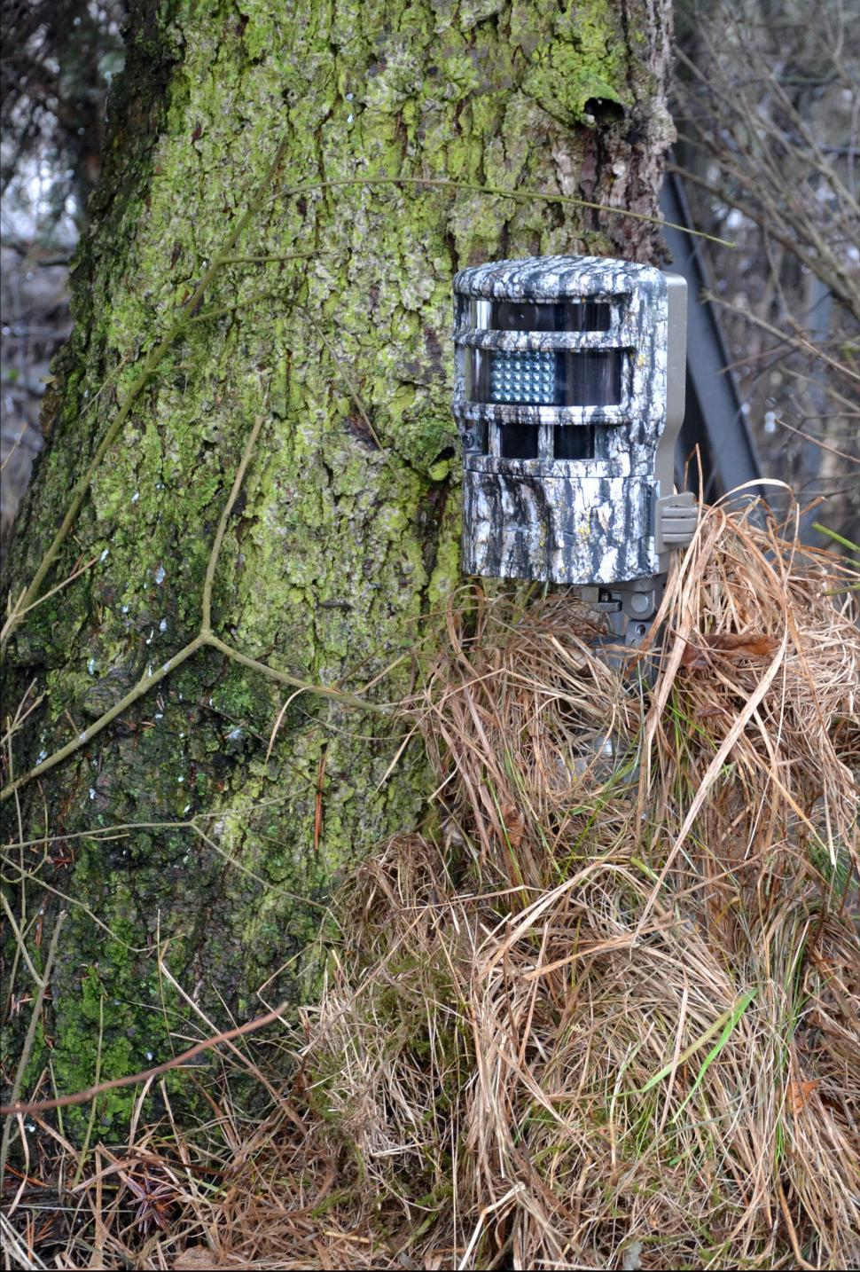 Download Free Stock HD Photo of Game camera Online