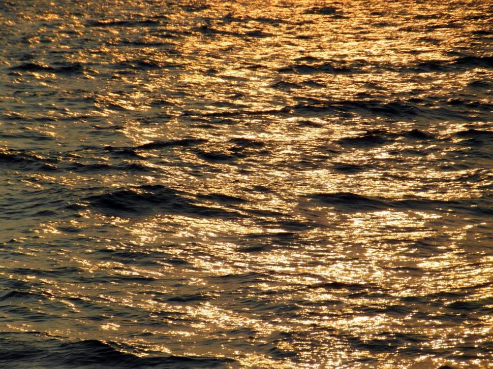Download Free Stock Photo of Golden Ocean