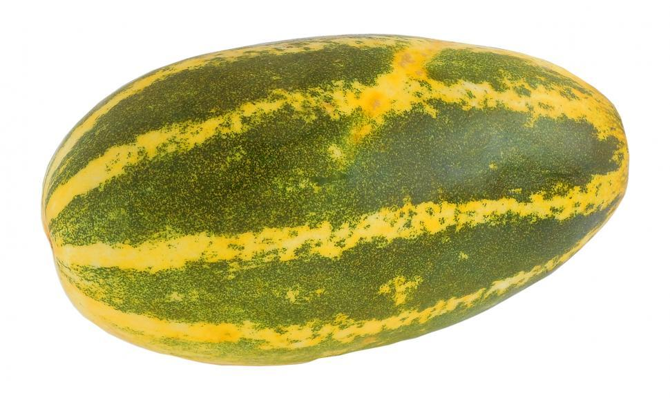 Download Free Stock HD Photo of Indian Yellow Cucumber Online