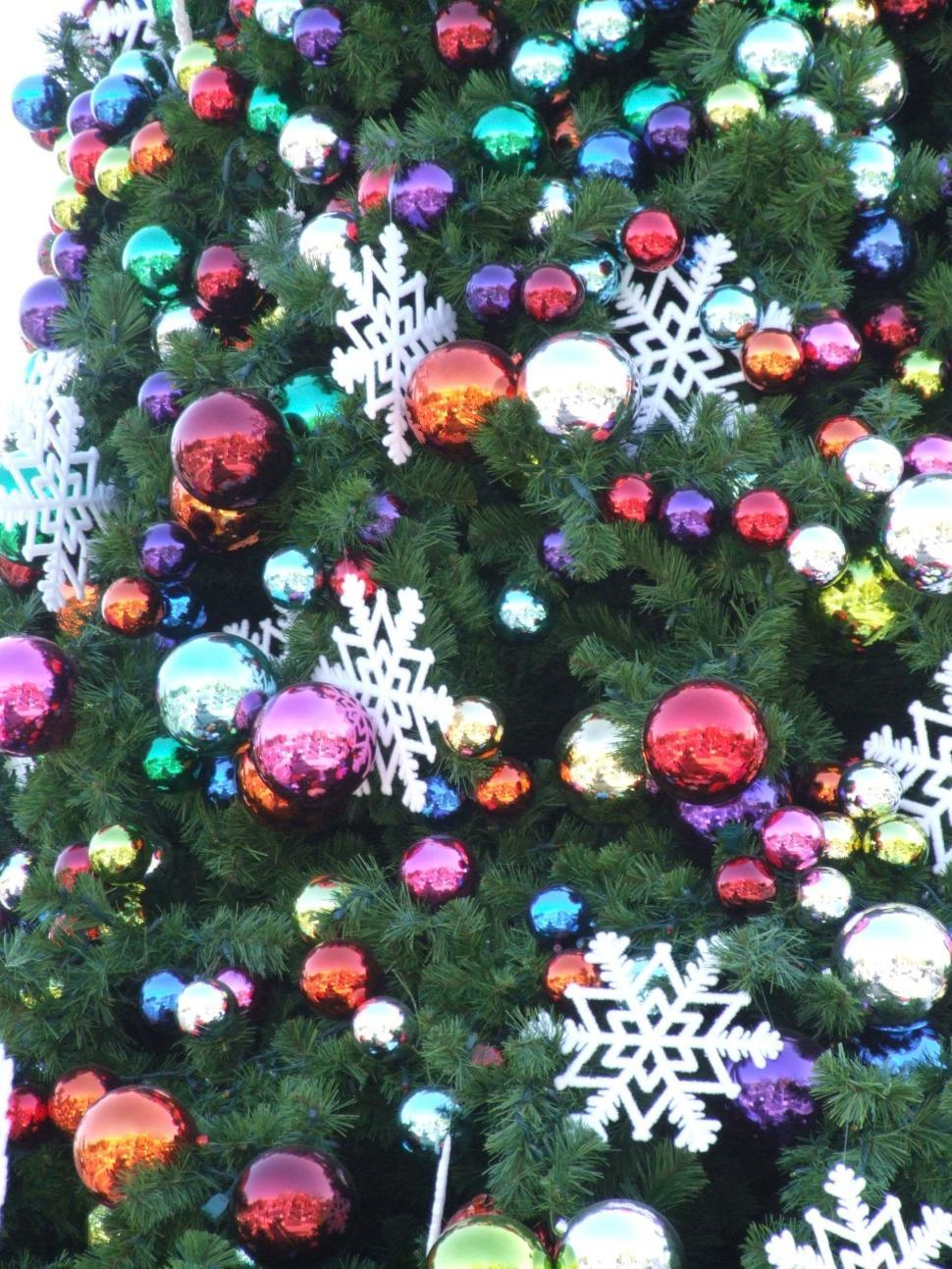 Download Free Stock HD Photo of Christmas Online