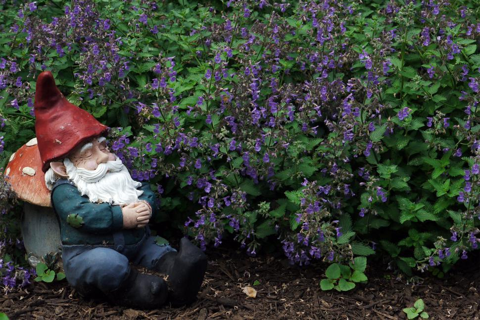 Download Free Stock Photo of Gnome Sleeping