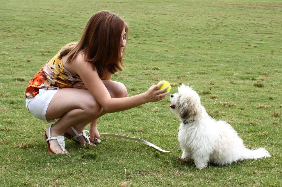Download Free Stock HD Photo of A cute young girl playing with her dog Online